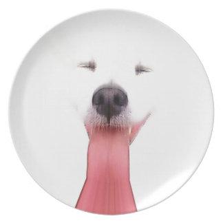 Mini American Eskimo Melamine Plate