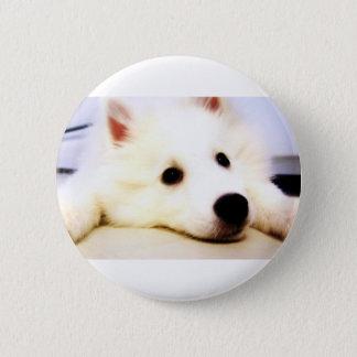 Mini American Eskimo Pinback Button