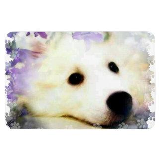 Mini American Eskimo Rectangular Photo Magnet