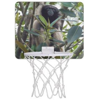 Mini aro de baloncesto del Gibbon Canasta Mini
