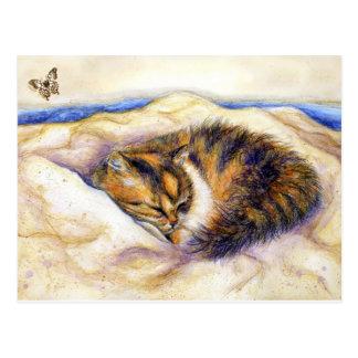 Mini Art Calico Cat Sleeping Postcard