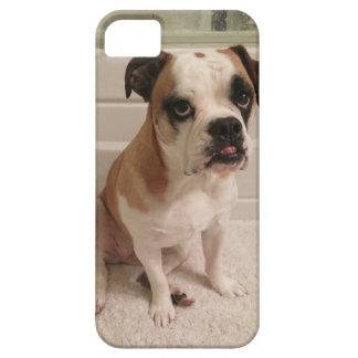 Mini Bulldog Puppy Eyes iPhone SE/5/5s Case