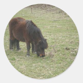 Mini caballo Stiickers Pegatina Redonda