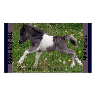 Mini caballo tarjetas de visita