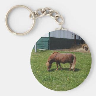 Mini caballos llavero redondo tipo pin