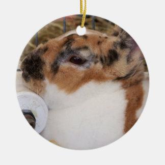 Mini cabeza del conejo del rex del tri color quebr ornaments para arbol de navidad