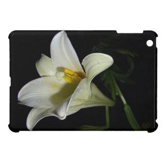 Mini caso de Ipad iPad Mini Cárcasas