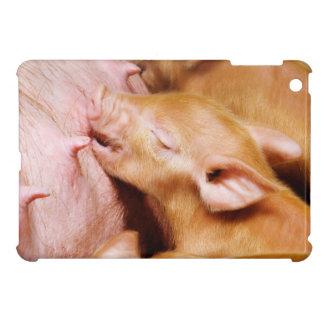 Mini caso de Tamworth del iPad lindo del cochinill iPad Mini Fundas