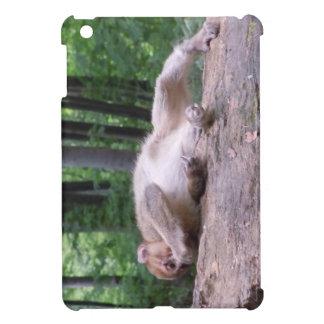 Mini caso del bebé del iPad curioso del mono