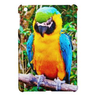 mini caso del iPad Azul-y-amarillo del Macaw
