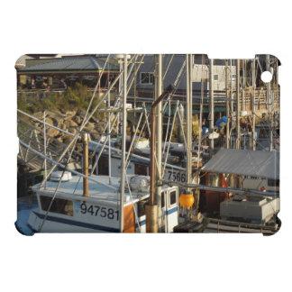 mini caso del iPad: Barcos y Embarcadero de la bah iPad Mini Cárcasa
