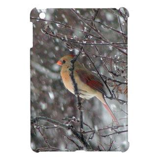 mini caso del iPad con la foto del cardenal de