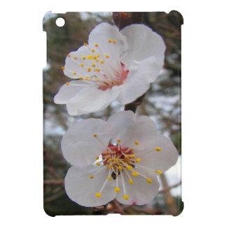 mini caso del iPad con los flores del albaricoque
