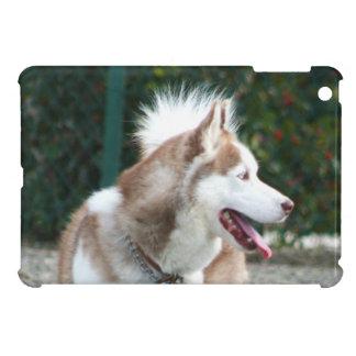 Mini caso del ipad fornido del perro