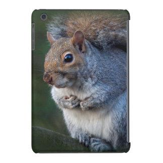Mini caso del iPad gris de la ardilla Fundas De iPad Mini Retina