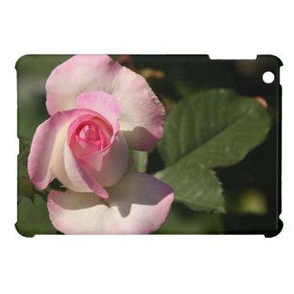 mini caso del iPad iPad Mini Carcasas