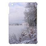 Mini caso del lago del iPad escarchado del ~ iPad Mini Carcasas