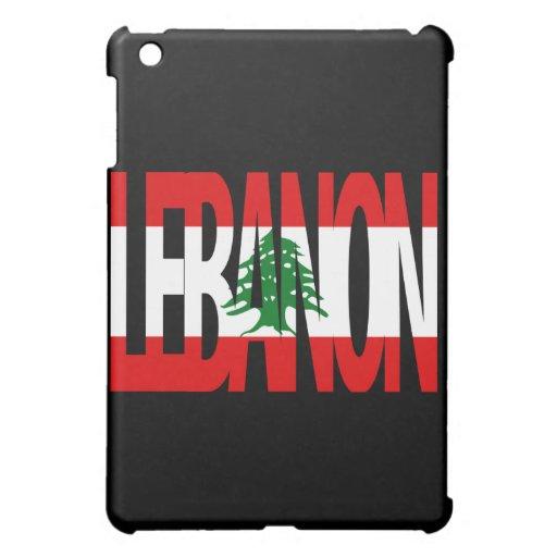 Mini caso mate del final de la bandera del iPad li