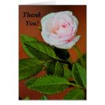 ¡Mini color de rosa gracias! tarjeta