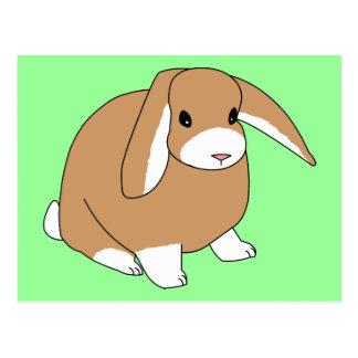 Mini conejo del Lop Tarjeta Postal