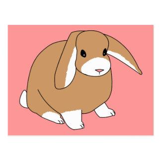 Mini conejo del Lop Tarjetas Postales
