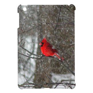 mini cubierta del iPad con la foto del cardenal de