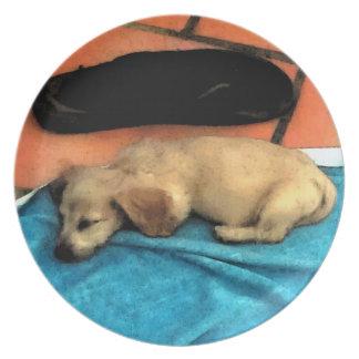 Mini Doxie perrito el dormir Plato Para Fiesta