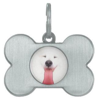 Mini esquimal americano placa mascota