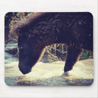 Mini Filly Crossing the Water Mouse Pad