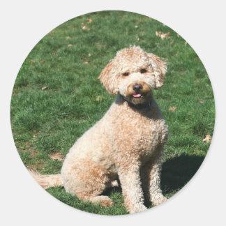 Mini Goldendoodle puppy stickers