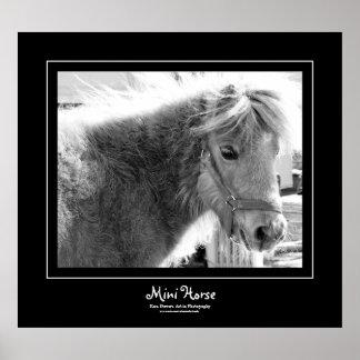 Mini Horse Black Border Poster
