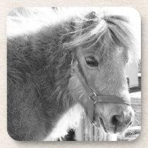 Mini Horse Drink Coaster