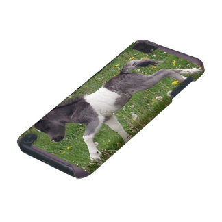 Mini Horse iPod Touch (5th Generation) Case