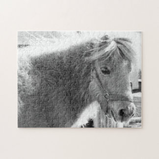 Mini Horse Jigsaw Puzzle