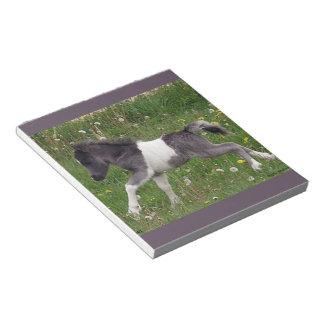 Mini Horse Note Pads