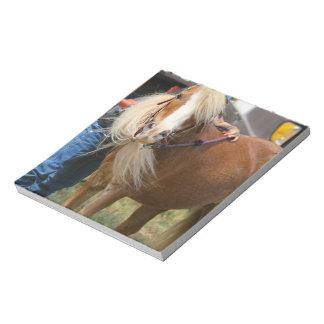 Mini Horse Scratch Pad