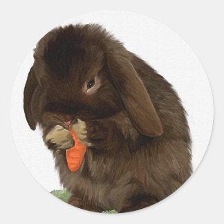 Mini Lop Bunny and carrot Classic Round Sticker