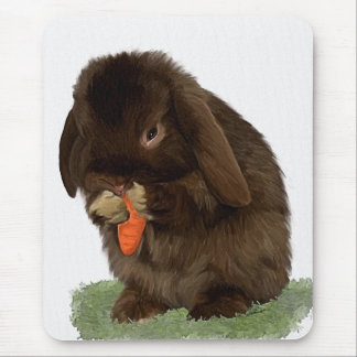 Mini Lop Bunny and carrot Mouse Pad