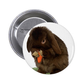 Mini Lop Bunny and carrot Pinback Buttons