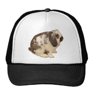 mini Lop Bunny Hat