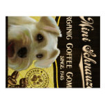 Mini marca del Schnauzer - Organic Coffee Company Tarjeta Postal