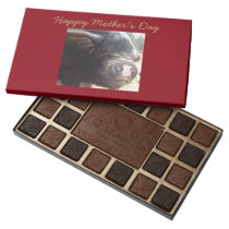 Mini Pig Mother's Day 45 Piece Assortment 45 Piece Box Of Chocolates