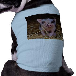mini pig T-Shirt