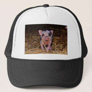 mini pig trucker hat