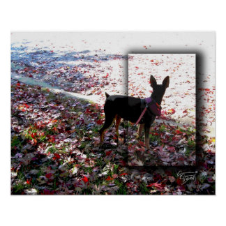 Mini Pin in Autumn Leaves Poster