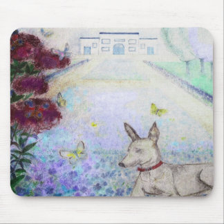 mini-pincher in front of the flaxfield mouse pad