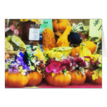 Mini Pumpkins and Gourds at Farmer's Market Cards