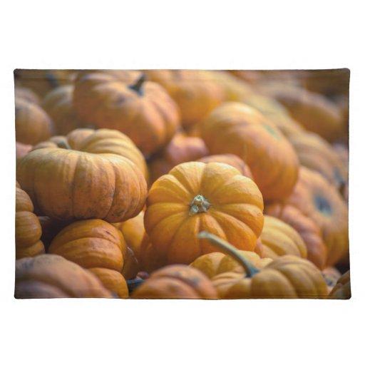 Mini Pumpkins Cloth Place Mat