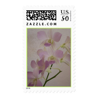 Mini Purple 'Blue Hawaii' Orchid Postage