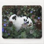 Mini Rex bunny rabbit mousepad